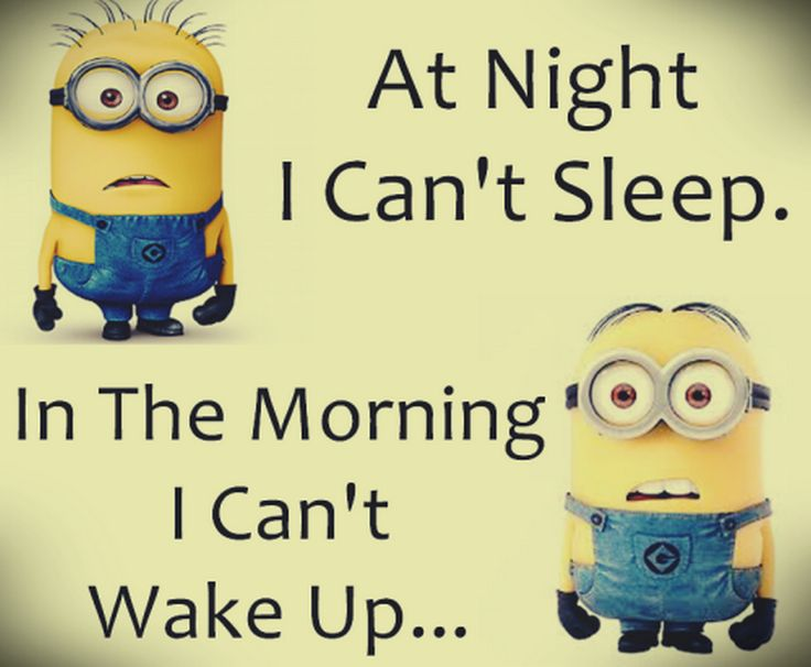 At Night I Can't Sleep In The Morning I Can't Wake Up
