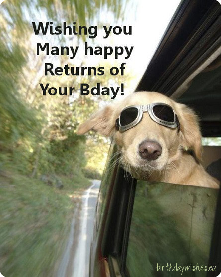Dog Wishes Happy Birthday Picture