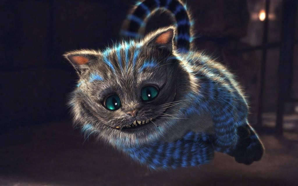 Fantastic Funny 3d Cat 4K Wallpaper
