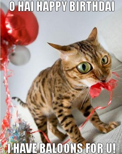 Funny Cat Happy Birthday Wishes Image