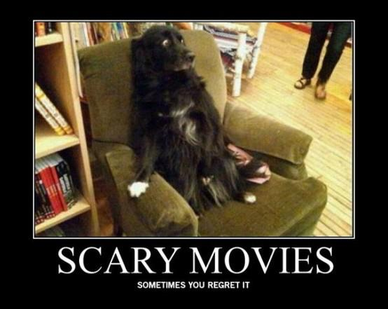 Funny Ninja Memes Scary Movies Sometimes You Regret It Image