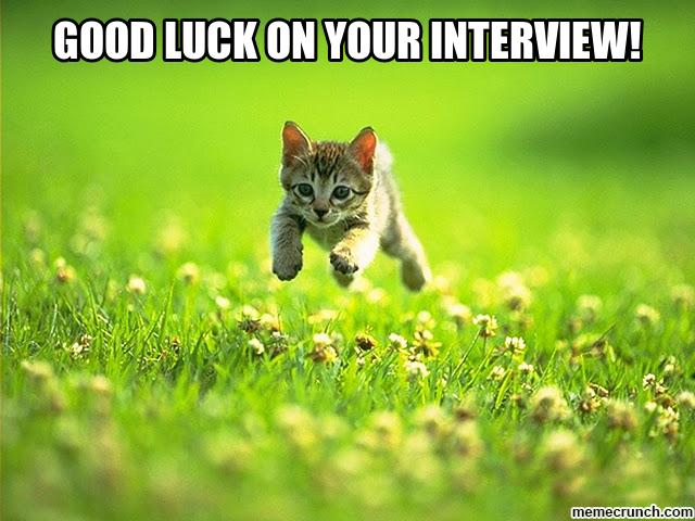 Good Luck On Your Interview Kitten Image