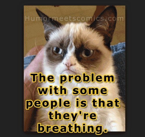Grumpy Cat Meme The Problem With Some People Is That They Are Breathing