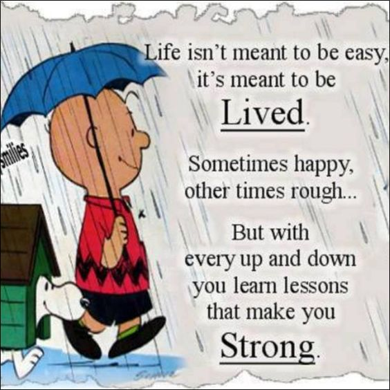 Life Isn't Meant To Be Easy Its Meant To Be Lived. Sometimes Happy Other Times Rough. But With Every Up And Down You Learn Lessons