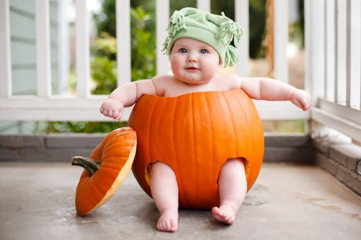Pumpkin Baby Wallpaper