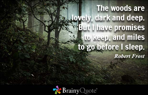 The Woods Are Lovely Dark And Deep But I Have Promises To