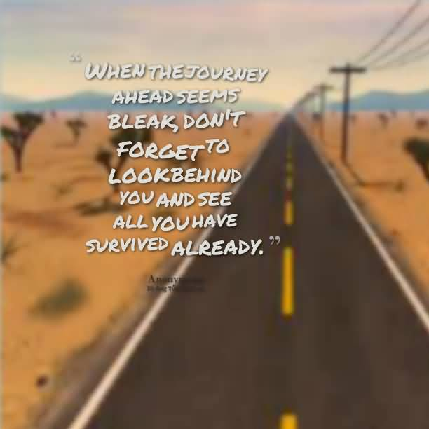 When the journey ahead seems bleak dont forget to look behind you and see al you have survived Anonymous