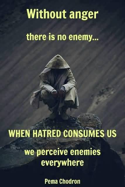 Without Anger There Is No Enemy When Hatred Consumes Us We Perceive Enemies Everywhere Pema Chodron