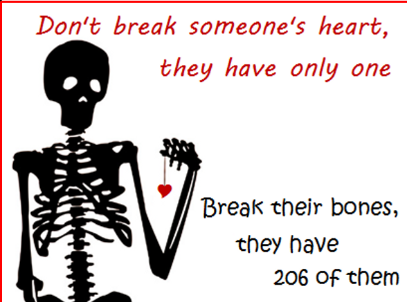Dont Break Someones Heart They Have Only One Break Their Bones They Have 206 Of Them