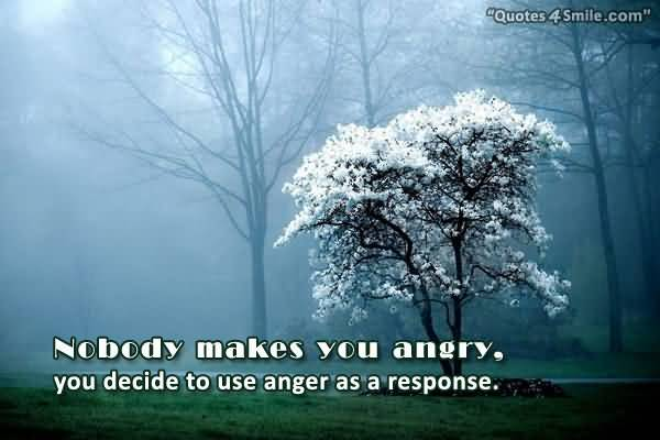 Nobody Makes You Angry You Decide To Use Anger As A Response