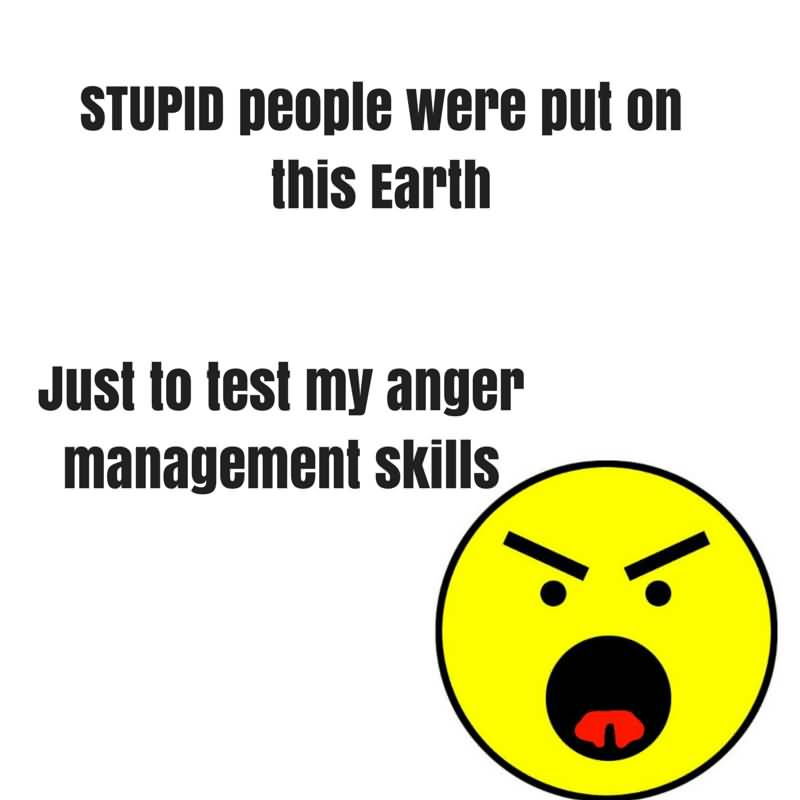 Stupid People Were Put On This Earth Just To Test My Anger Management Skills