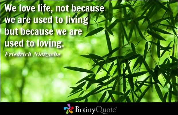 We Love Life Not Because We Are Used To Living But Because We Are Used To Loving Friedrich Nietzsche