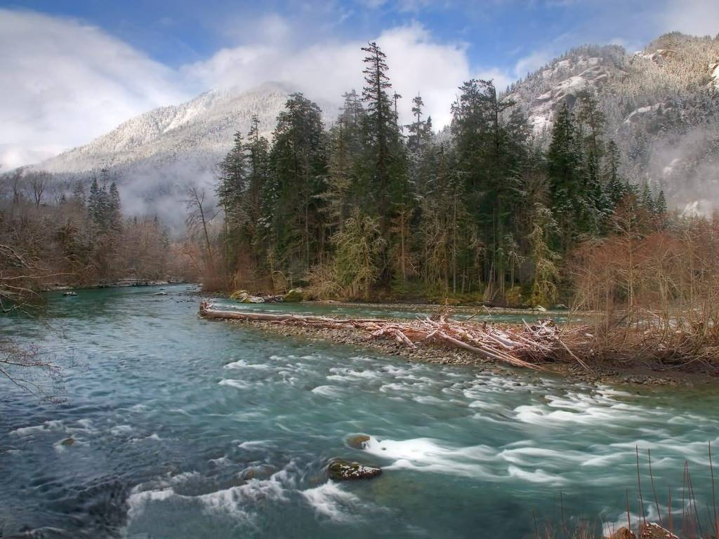 Amazing Elwha River Olympic National Park Washington 4K Wallpaper