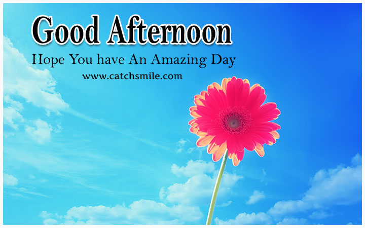 Amazing Good Afternoon Wishes Wallpaper