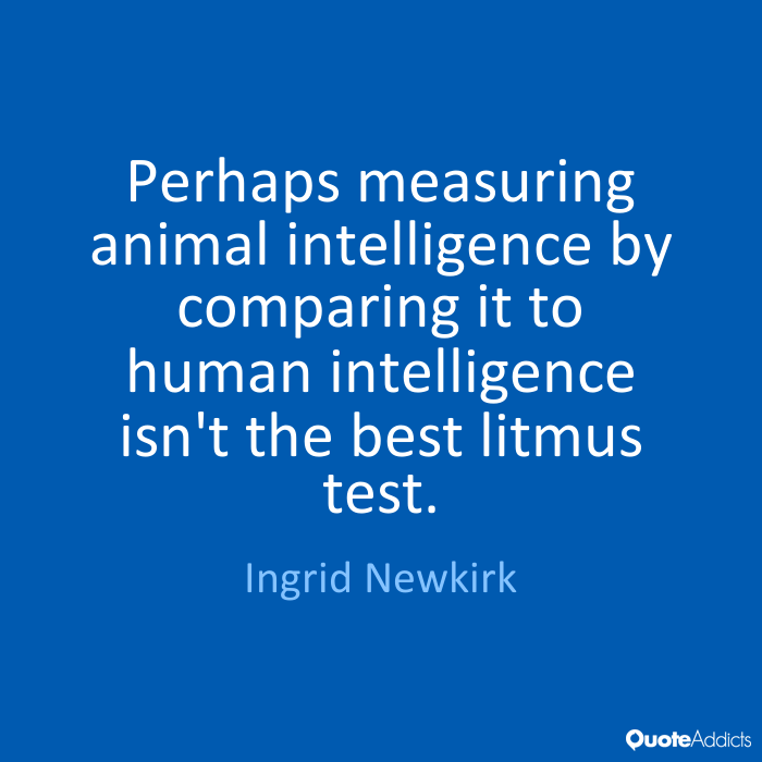 a comparison of human intelligence and animal intelligence