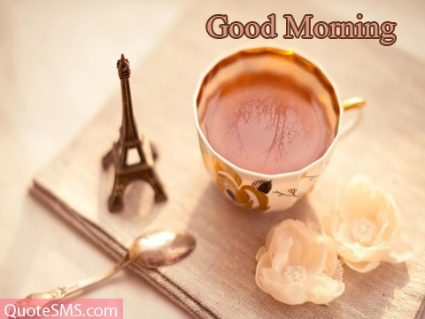 Beautiful Good Morning Wishes Image