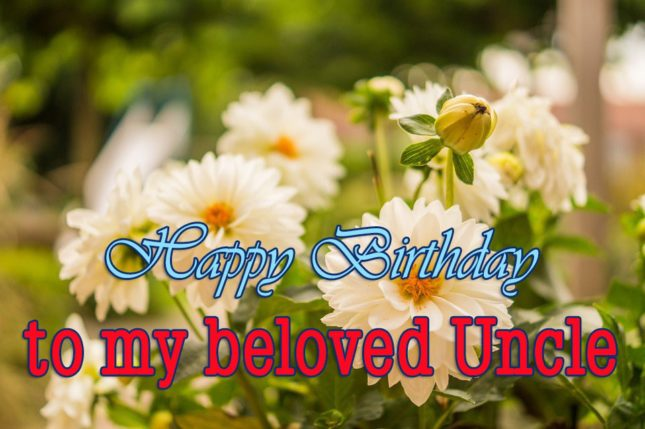 Uncle Birthday Wishes017