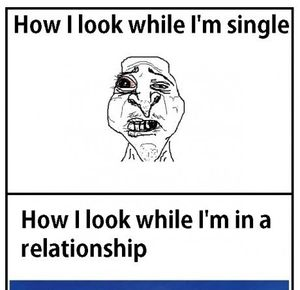 Funny Single Memes How i look while i'm single how i look while i'm in a relationship
