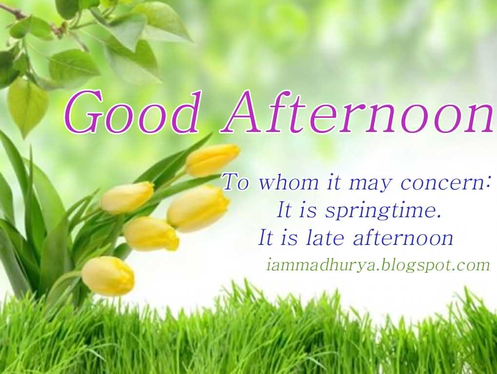 Good Afternoon Message Picture