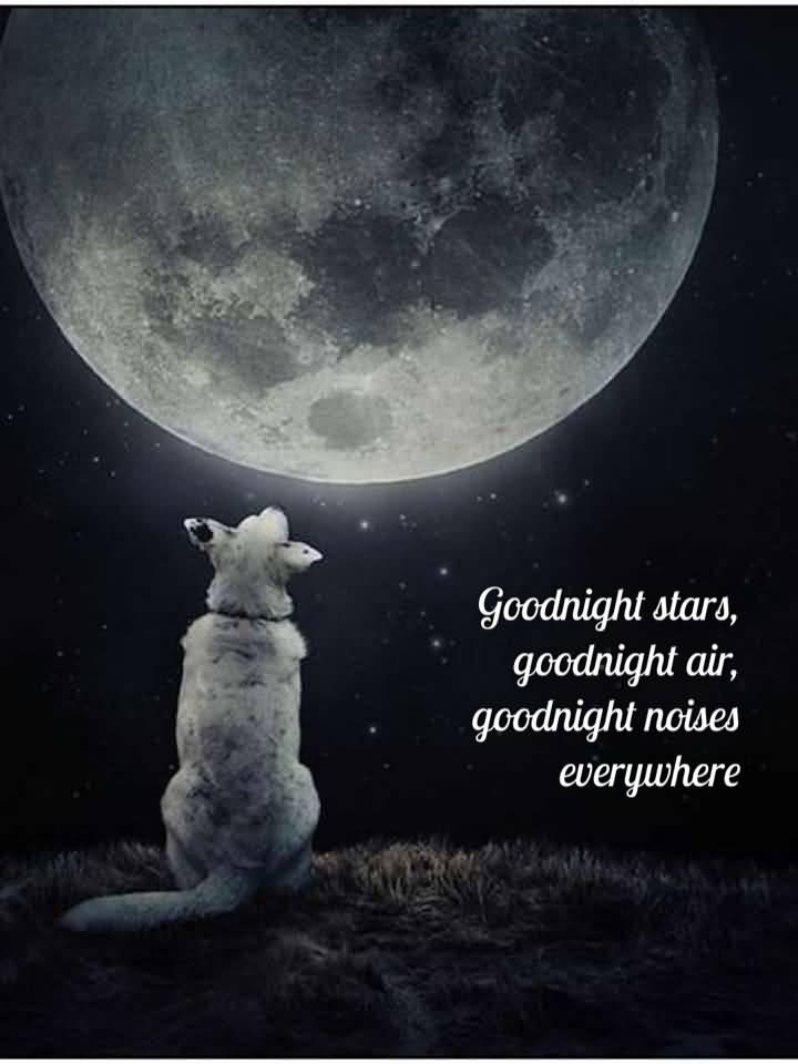 Goodnight moon quotes goodnight stars goodnight air for Goodnight moon tattoos