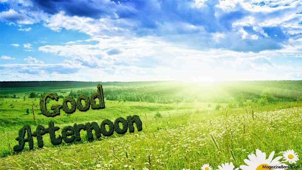 Have A Good Afternoon Wishes Image