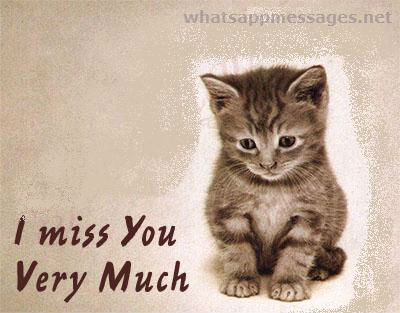 I Miss You Very Much Sad Kitten Image