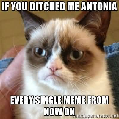 If you ditched me antonia every single meme from now on Funny Single Memes