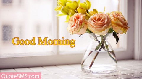 Lovely Good Morning Wishes Message