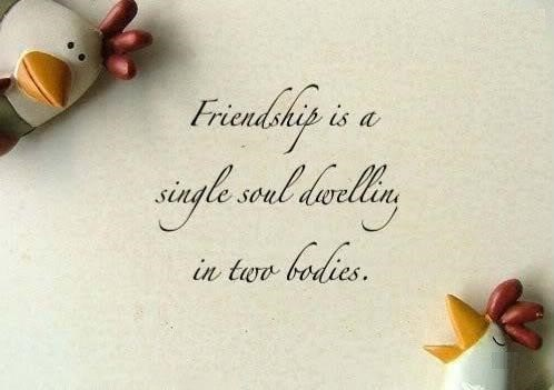 Message Happy Friendship Day