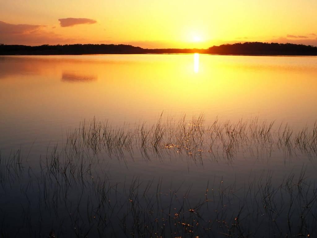 Most Unique Everglades National Park at Sunrise Florida 4K Wallpaper