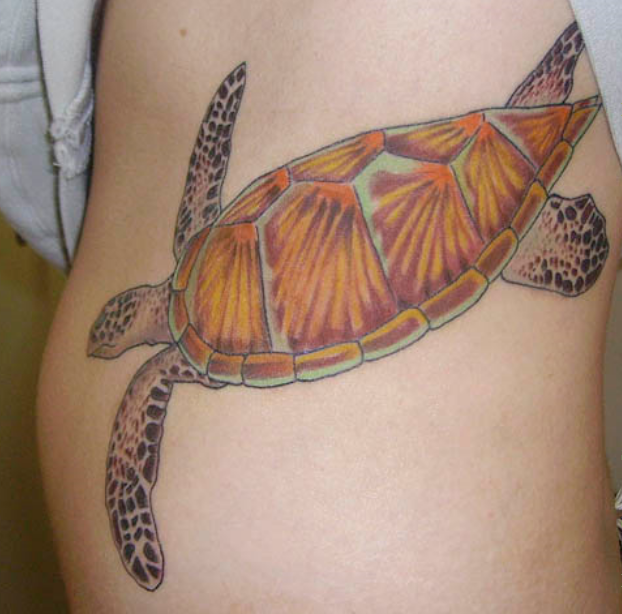 Motivational Red And Black Color Ink Aqua Turtle Tattoo Design For Girls On Thigh