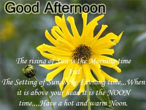 Sending You Good Afternoon Message Image