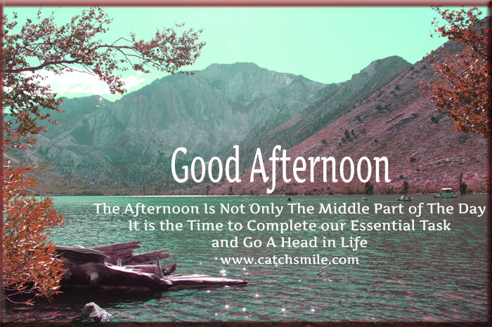 Wonderful Good Afternoon Quotes Picture