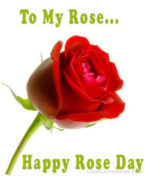 Wonderful Happy Rose Day Greeting Image