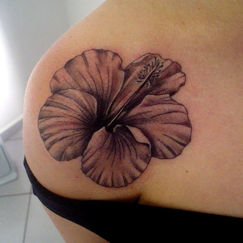 Attractive Hibiscus Flower Tattoo On Shoulder For Girls