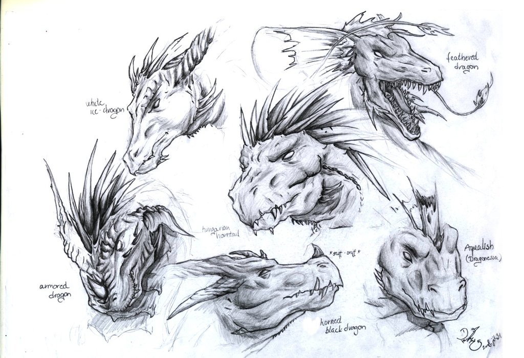 Awesome Dragon Head Tattoo Designs For Boys