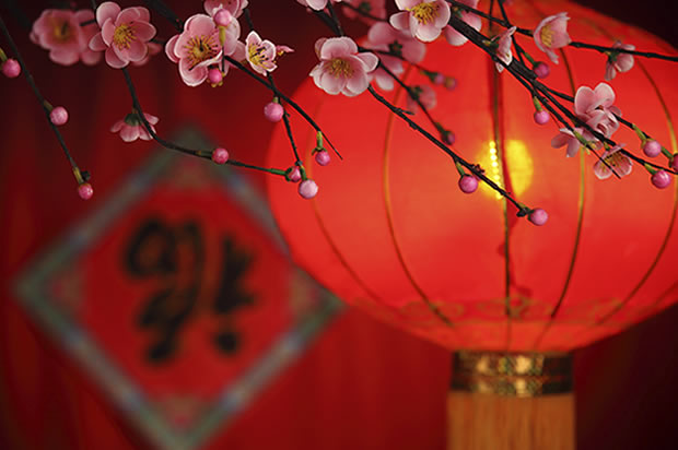 Beautiful Red Lamp Decoration Idea On Chinese New Year Image