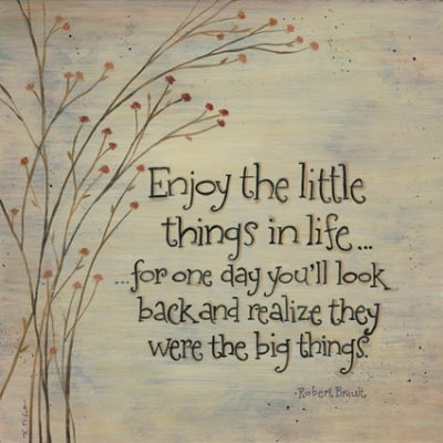 Best Life Quotes Enjoy the little things in life...for one day you'll look back and realize they were the big things