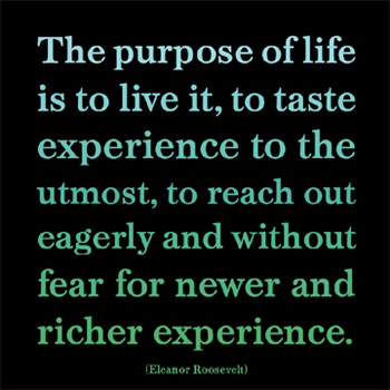 Best Life Quotes The purpose of life is to live it, to taste experience to the utmost
