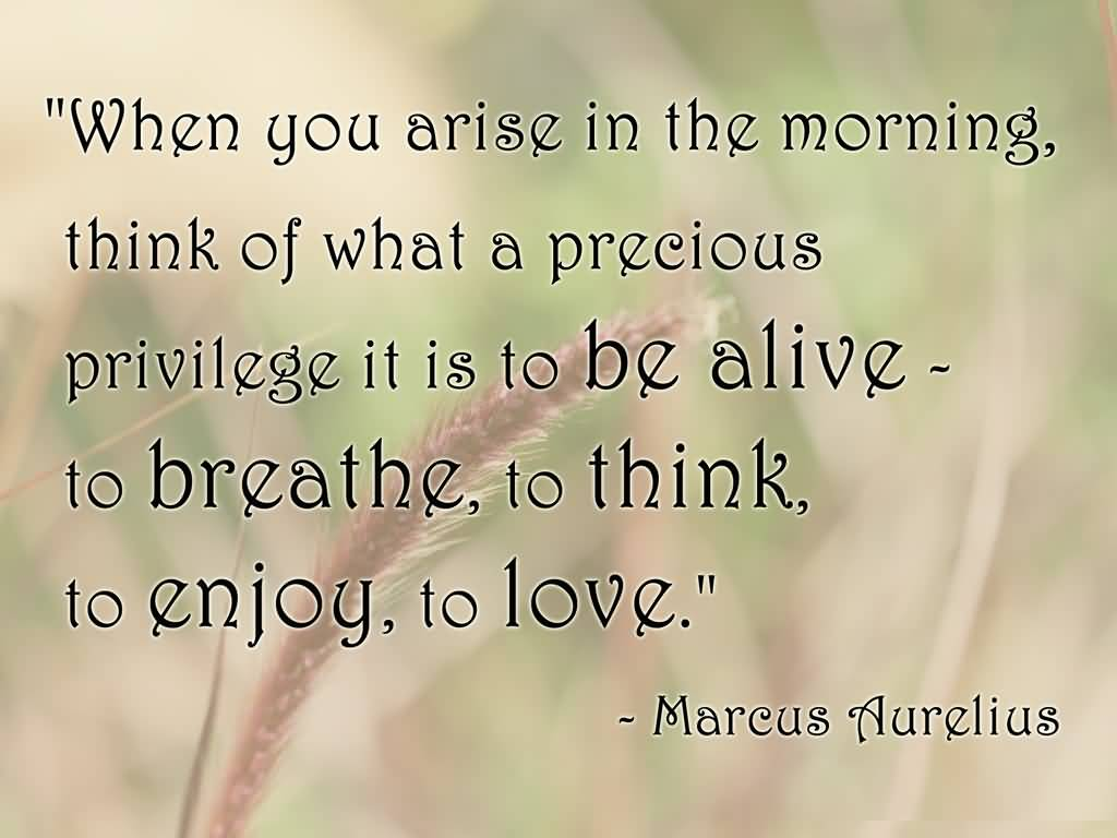 Best Life Quotes When you arise in the morning think of what a precious privilege it is to be alive to breathe to think to enjoy to love Marcus Aurelius