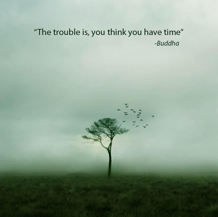 Buddha Quotes Sayings 11