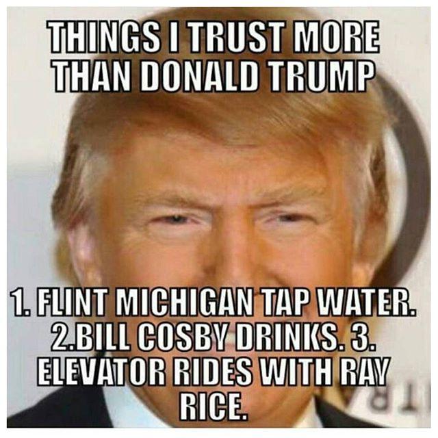 Donald Trump Meme Things I Trust More Than Donald Trump