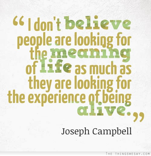 Experience Quotes i don't believe people are looking for the meaning of life as much as they are looking