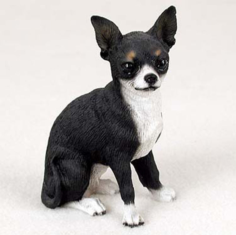 Fantastic Black Chihuahua Dog Sitting On Floor