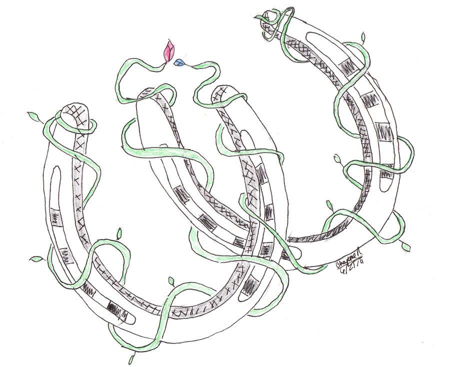 Shoe Flower Line Drawing : Fantastic horseshoe tattoo designs for boys picsmine