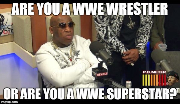 Funny Birdman Memes Are You A WWE Wrestler Or Are You A WWE Superstar Graphics