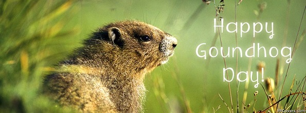 Happy Groundhog Day Wishes For Facebook Cover Image