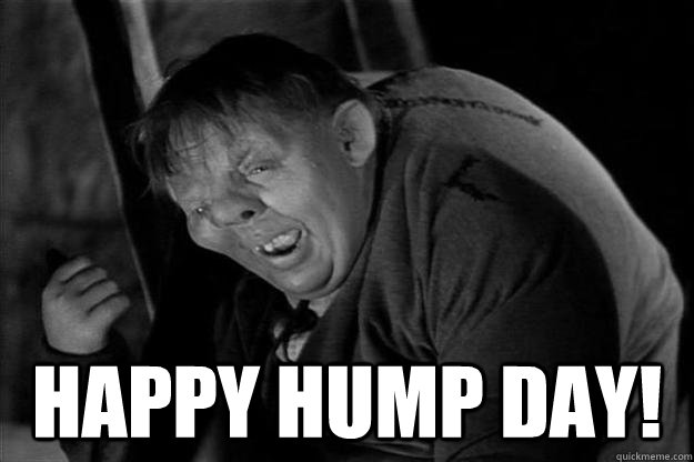 Happy Hump Day Meme Image