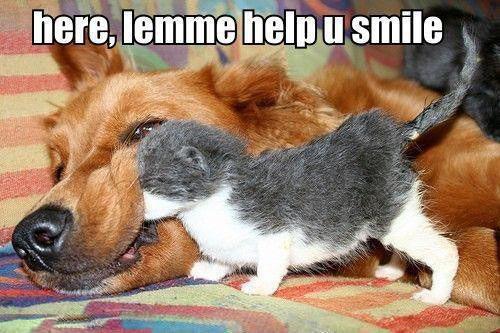 Here Lemme Help U Smile