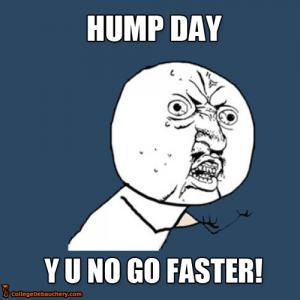 Hump Day Y U No Go Faster Meme Image